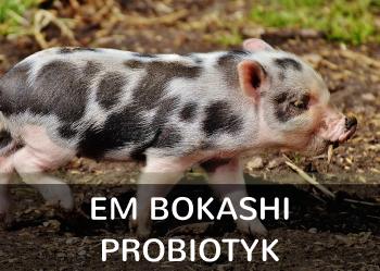 EM Bokashi Probiotyk