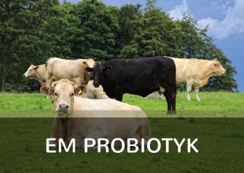 EM Probiotyk